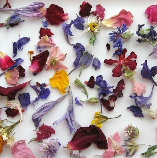 Coriandoli per matrimonio con fiori secchi