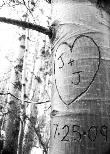 Save the date foto incisione albero