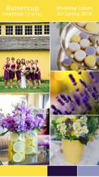 Palette colori matrimonio 2016 buttercup giallo e viola
