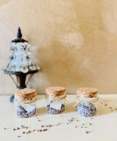 vasetti bomboniere con semi da piantare